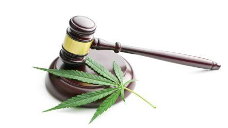 CBD Rechtslage - CBD ist legal!