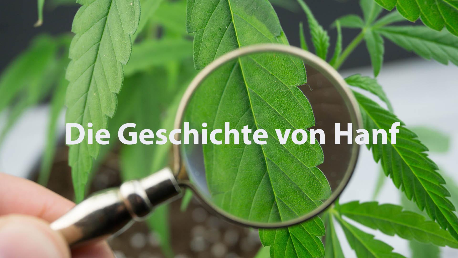 Die Geschichte von Hanf als Rohstoff und Pflanze
