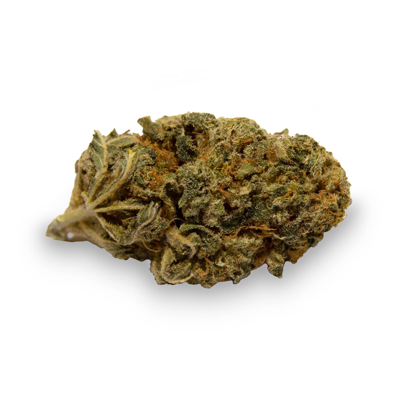 CBD Blüten Gelato mit ca. 5% CBD