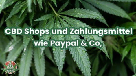 CBD Shop Paypal und Zahlungsmethoden