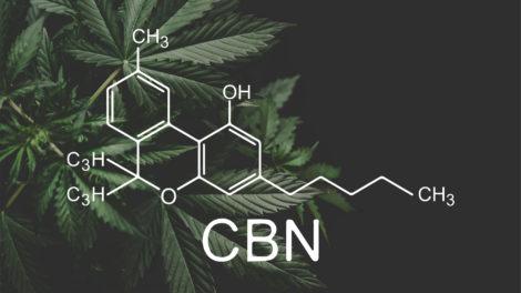 Was ist CBN - Wirkung & Eigenschaften