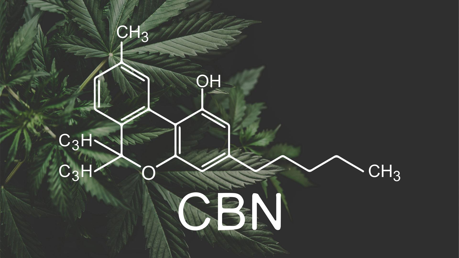 Cannabinol (CBN) und Cannabinolsäure (CBNA) – Alles über dieses Cannabinoid!